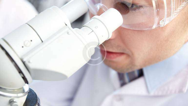 What Causes CDC Bird Flu?